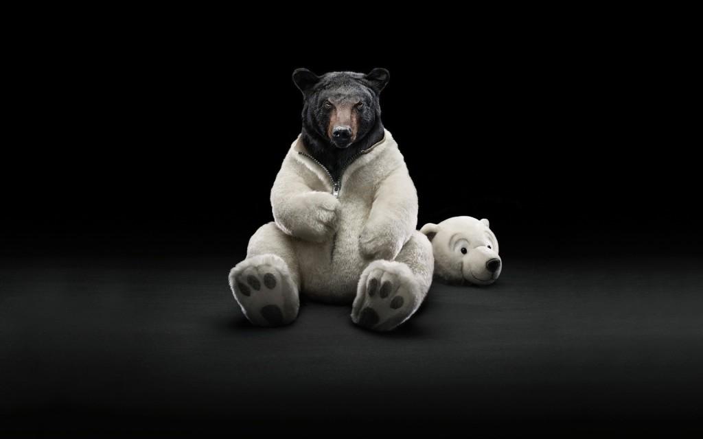 Чёрно-белый медведь